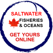 Saltwater Fishing Licences