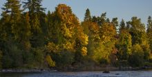 Vancouver Islands Fall Colours