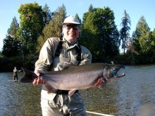 Literally an average size Coho Salmon in the Stamp River
