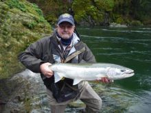 Big Beautiful Steelhead