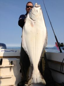 Ucluelet Halibut