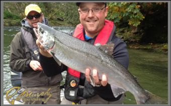 Chrome Jack Chinook Salmon