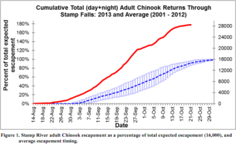 Stamp River Chinook Returns as of Oct 21 2013