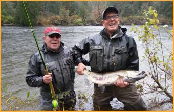Chum Salmon on the Fly
