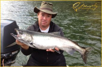 Stamp River Chrome Chinook October 2015