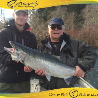 17.5 pound Stamp River Winter Steelhead