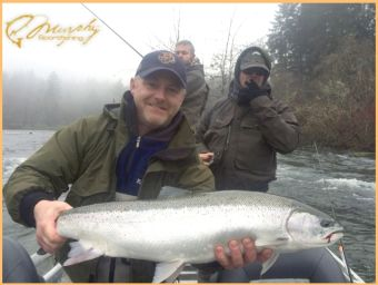 Beauty Early January Tubby Steelhead