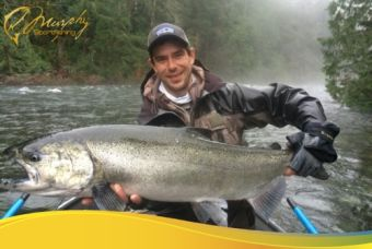 Winter in River Chinook Salmon!!