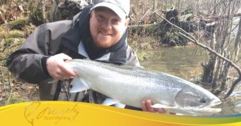 Stamp River WInter Steelhead Report Dec 1 2014 Shaun Evans