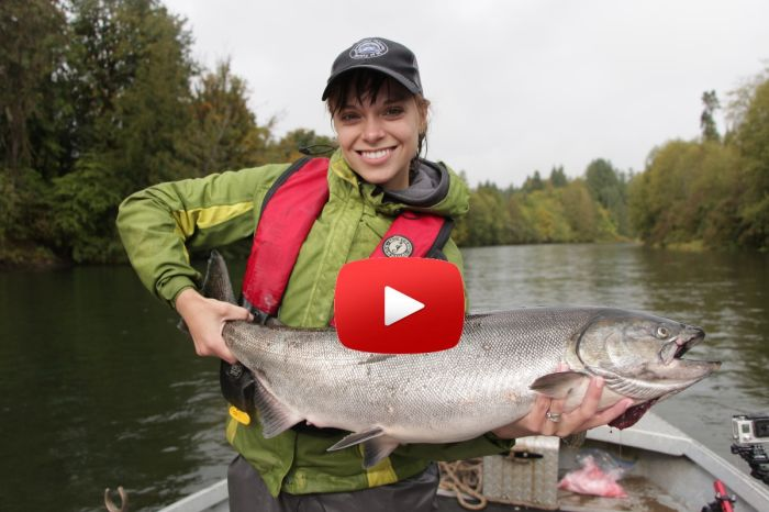 Stamp River Fall Chinook Video