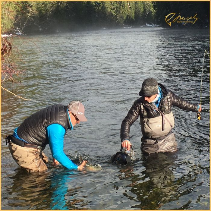 Fly Fishing Winter Steelhead Stamp River