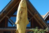 Fall Salmon & Steelhead 5 day Fish-Lodge-Dine