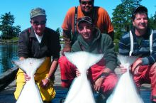 Kyuquot Sound Pacific Halibut on the Hook Video