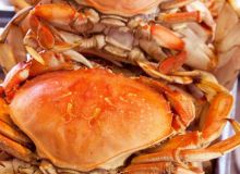 Ucluelet Cooked Dungeness Crab
