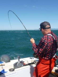 Salmon fishing in Ucluelet - Fish on!